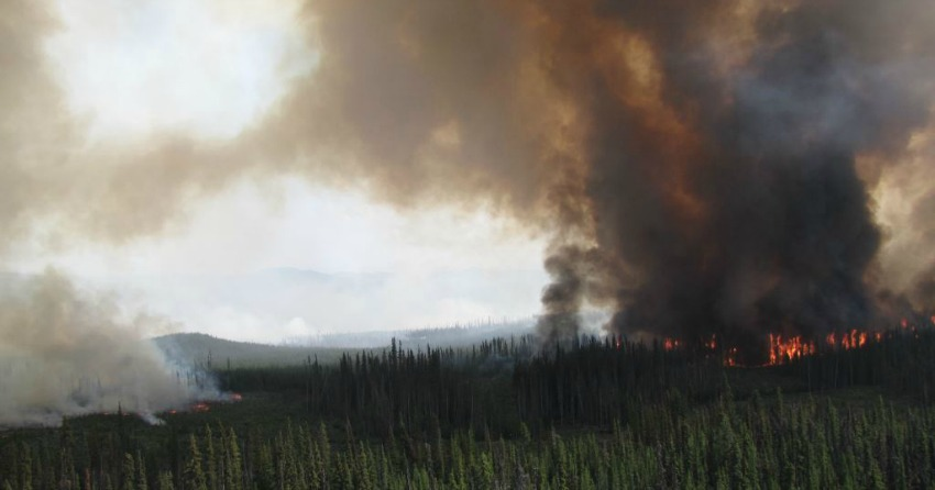 <who>Photo Credit: BC Wildfire Service</who>