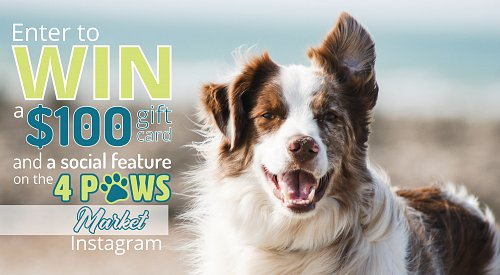 CONTEST CLOSED! Enter to win a $100 gift card and a social shout out on the 4 Paws Market Instagram page!