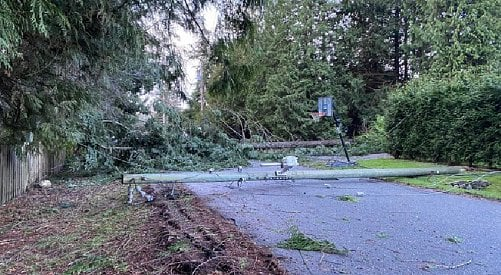UPDATE: BC Hydro restores power to 97% of customers impacted by the windstorm